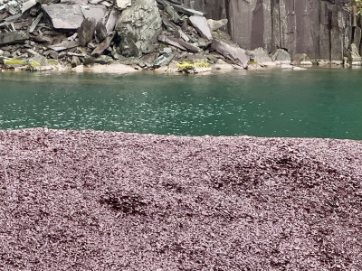 Plum Slate Chippings from North Wales