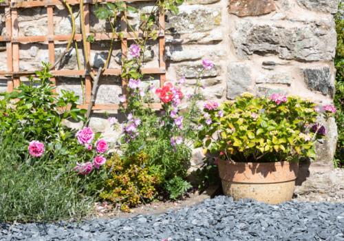 Plant Borders & Pots - Gallery Image
